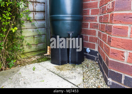 Water flowing from the tap of a Ward Strata slimline water butt, installed at the bottom of a downspout of a house in the UK. Environment-friendly met - Stock Image