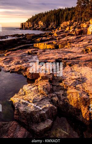 Sunrise on Otter Cliffs in Acadia National Park. - Stock Image