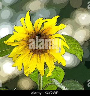 Sunflower with bee on set-aside land. Photoshop posterisation. - Stock Image