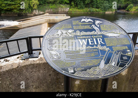 A weir with a fish ladder on the River Tees in Barnard Castle, County Durham, UK. - Stock Image