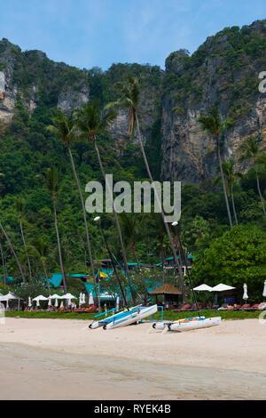 Palm trees on Centara Grand beach near Ao Nang, Krabi province, Thailand - Stock Image