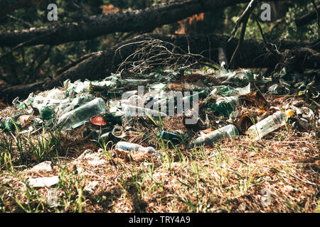 Pollution of the environment. Garbage pile in the forest. Waste or debris on the ground. Pollution of nature. - Stock Image