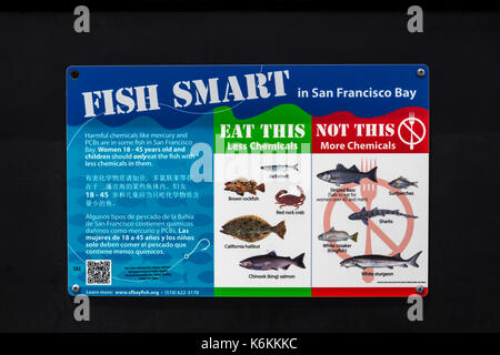English and Chinese and Spanish language sign, trilingual sign, fish smart, Fort Baker fishing pier, Fort Baker, Sausalito, Marin County, California - Stock Image