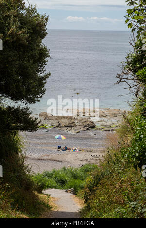 Footpath down to the beach at Donderry, on the south Cornish coast, Cornwall, UK - Stock Image