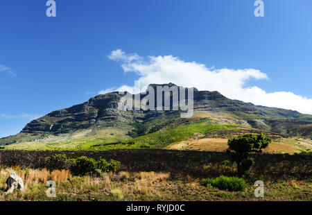 Looking upwards on the Table Mountain in Cape Town. - Stock Image