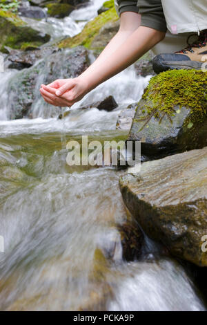 refreshment,drinking,hiking,mountain stream - Stock Image