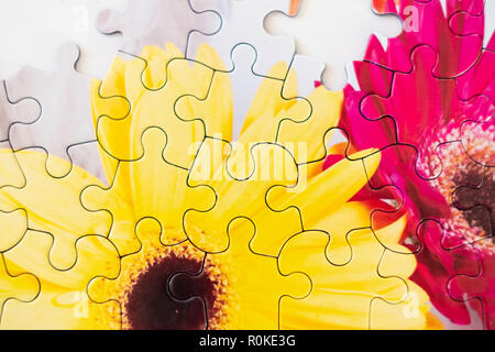 A partially finished floral jigsaw puzzle lying on a white background. - Stock Image