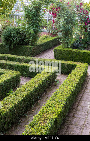 Formal box hedge using Buxus Sempervirens, August, England, UK - Stock Image