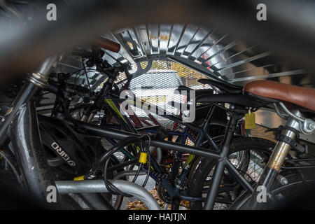 Interior of a bike hangar, on street secure storage rental scheme for bicycles in Waltham Forest, London - Stock Image