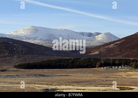 Snow on the mountain of Lochnagar in the Cairngorm National Park, Scotland, UK, during winter - Stock Image