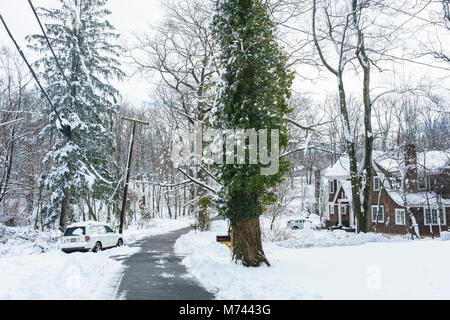 Chappaqua, NY, USA, 8th March 2018. Biggest snowstorm in years buries suburban Chappaqua, New York with up to 13.5 - Stock Image