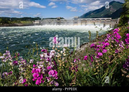Dams, Generators, Bonneville Dam, Oregon/Washington - Stock Image