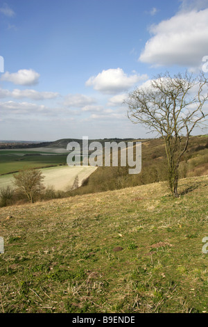 Dunstable Downs, Bedfordshire, UK - Stock Image