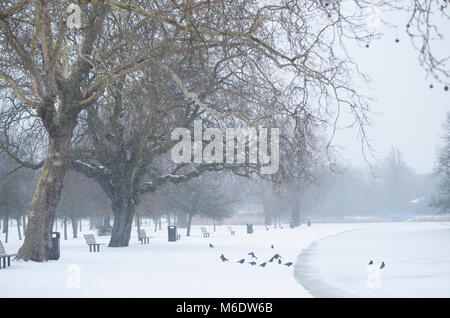 Regents Park with Carrion Crow, (Corvus corone), on ground beside frozen lake  during snowfall, London, United Kingdom. - Stock Image