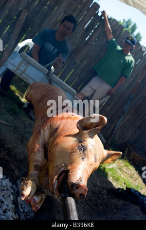 Two Filipinos hand turn a pig ,or lechon, over a bed of hot coals while preparing for a wedding in Bentonville, - Stock Image