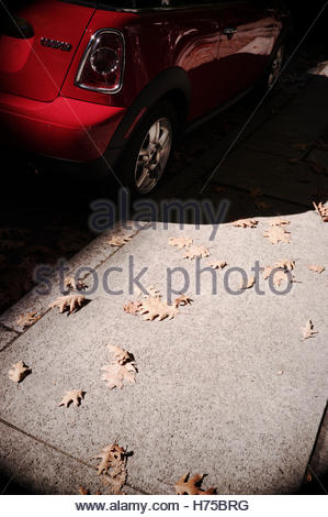 Kerbside parked red Mini automobile / car, autumn (fall) leaves on sidewalk (pavement). Seattle, USA. - Stock Image
