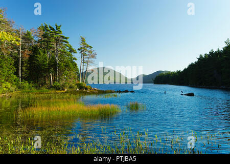 Late afternoon view of Eagle Lake in Acadia National Park, Maine, USA. Two herons can be seen on the rocks. - Stock Image