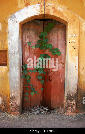 Door in Panaji, Goa, India - Stock Image