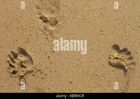 Three footprints in wet sand. - Stock Image
