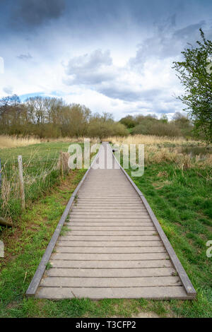 Boardwalk stretching into the distance under cloudy sky - Stock Image