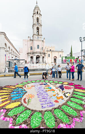 A giant football field size floral tapestry decorates the town square in front of the Parroquia San Miguel Archangel church in the central Mexican town of Uriangato, Guanajuato. Every year residents create giant floral carpets made from colored sawdust and decorated with flowers during the 8th Night Celebration marking the end of the Feast of St Michael. Uriangato became an international sensation after wowing Brussels with their floral carpet displayed at the Brussels Grand-Place during the Belgium Floral Carpet festival. - Stock Image