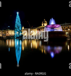 Trafalgar Square's annual Christmas Tree from Norway with the National Gallery in the background. - Stock Image