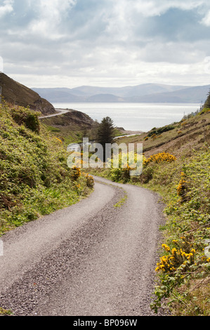 Lonesome Road #54. Remote Irish country road - Stock Image
