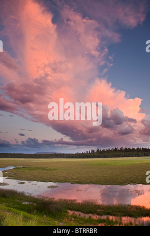 Sunset on pink cloud over Lower Lake Mary, summer monsoon rainy season, Coconino National Forest, south of Flagstaff, - Stock Image