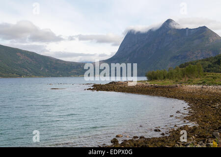 Picture of a fjord in norway - Stock Image