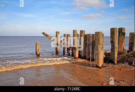 End of breakwater in deteriorating state revealed at low tide on the North Norfolk coast at Bacton-on-Sea, Norfolk, England, United Kingdom, Europe. - Stock Image