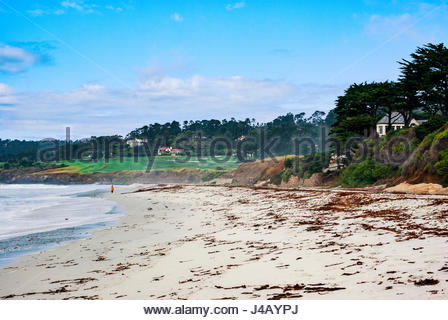 A woman strolls on the beach at Carmel-by-the-Sea, California, Pebble Beach Golf Course in distance. - Stock Image