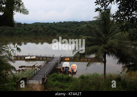 Boats idling by a  Pier Harbor in a deep forest - Stock Image