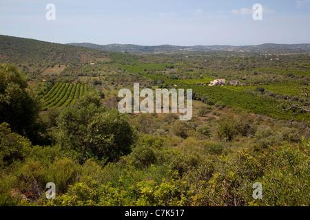 Portugal, Algarve, Near Pademe, Countryside - Stock Image