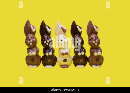 Easter bunnies isolated on a yellow background. - Stock Image