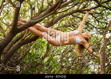 Redheaded woman wearing a bikini hanging from branches of tree in forest - Stock Image