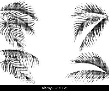 Various tropical palm leaves. Stylized Dots Design in Black and White Execution. Isolated on white background. illustration - Stock Image