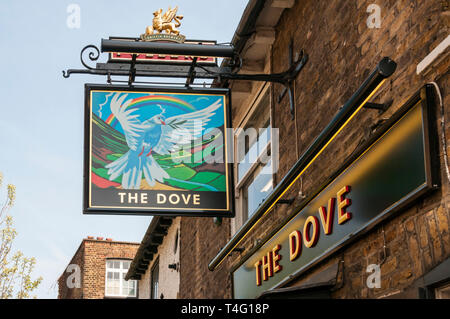 Pub sign of The Dove.  A historic Fullers public house beside the Thames on Upper Mall, Hammersmith. - Stock Image