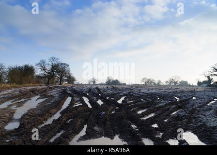 A heavily rutted and muddy water logged field covered in frost and frozen pools of water in North Shropshire England - Stock Image