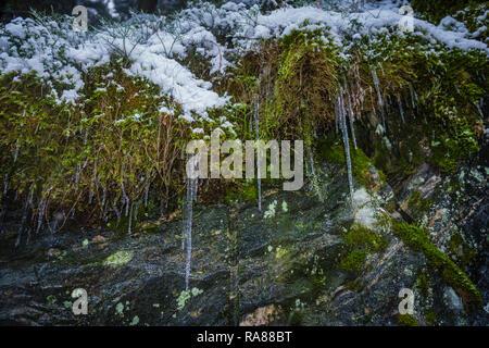 Mount Floyen, Bergen, Norway. - Stock Image