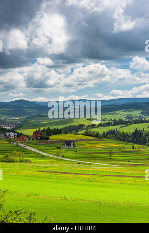 Rolling hills with meadows at sunny summer day. Countryside landscape.. - Stock Image