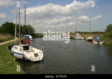 Boats at Horsey Staithe Norfolk Broads England UK - Stock Image