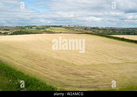 View from C2C cycle track over recently mown farmer's field towards Tantobie, Co. Durham, England, UK - Stock Image