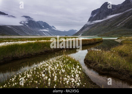 Sioralik Fjord - Stock Image
