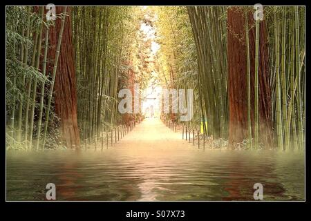 Flooded bamboo forest with eerie light - Stock Image