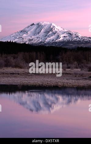 An amazing still lake scene in front of Mount Adams Washington - Stock Image