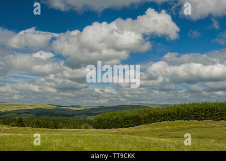 View east across the Brecon Beacons from the vale of Cwm Cadlan in Powys South Wales - Stock Image
