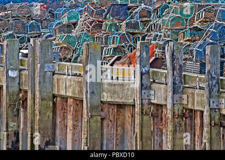 Lobster pots piled high behind the pilings and mooring posts that run along the edge of the quayside in Scarborough Harbour. - Stock Image