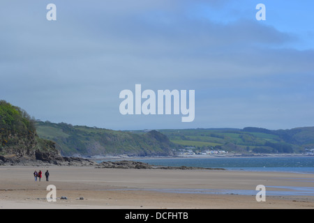 Saundersfoot Beach Pembrokeshire, Wales, in Early June. Quiet beach popular with dog walkers, families and couples - Stock Image