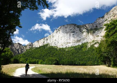 France, Isere, Vercors national natural reserve, the high plateau of Vercors, Chichilianne, Female hiker walking - Stock Image