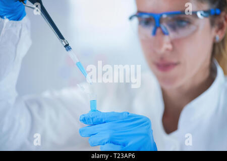 Young female scientist using pipette in research laboratory. - Stock Image